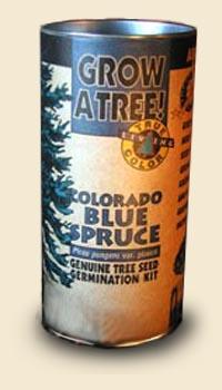 Colorado Blue Spruce Tree Kit