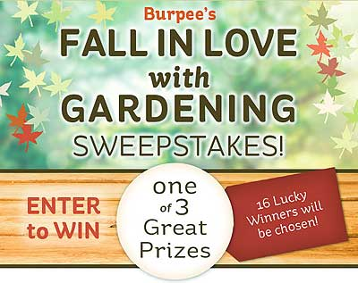 Burpee Fall in Love with Gardening Sweepstakes