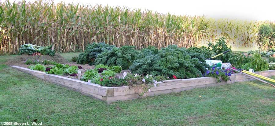 Building a raised garden bed for Building a raised garden