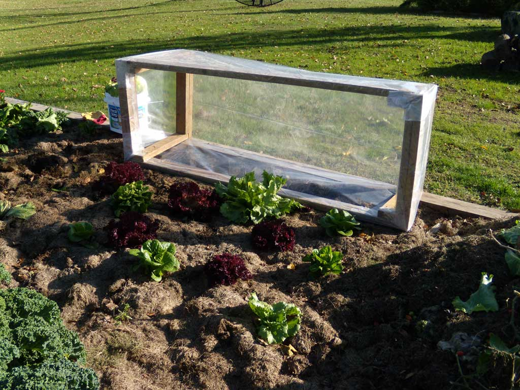 your cold plans frame for amish garden gardening winter