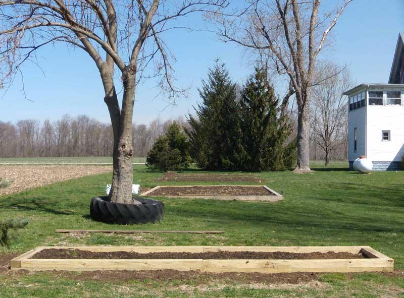 Senior Garden, May 2008