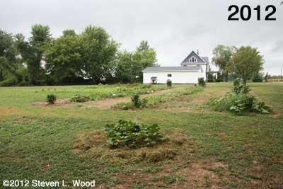 East Garden - 2012
