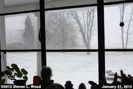 January 31, 2013 Snowstorm