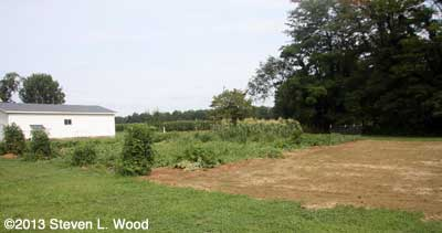East Garden with buckwheat patch tilled and ready
