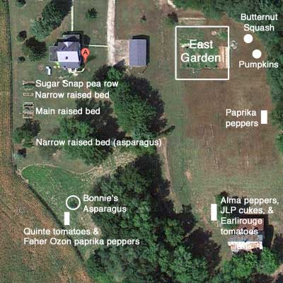 Google view of garden patches