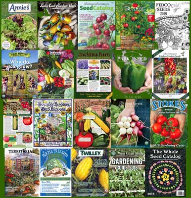 2018 Seed Catalogs