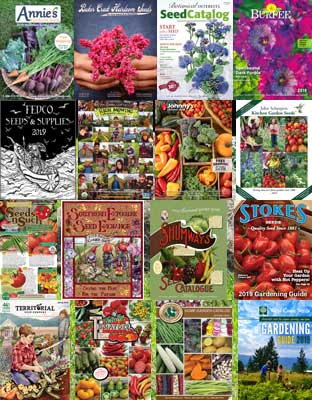 Seed Catalogs - 2019