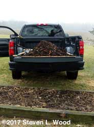 Compost for asparagus patch