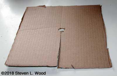 Corregated cardboard cutworm mat