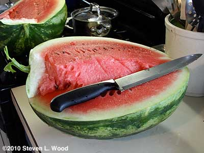 Cut Crimson Sweet watermelon