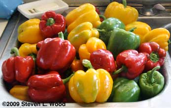 Peppers - 2009