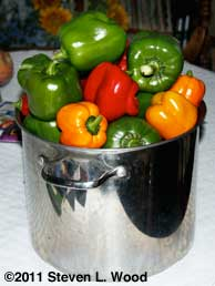 Kettle of 2011 peppers