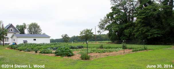 Our East Garden - June 30, 2014
