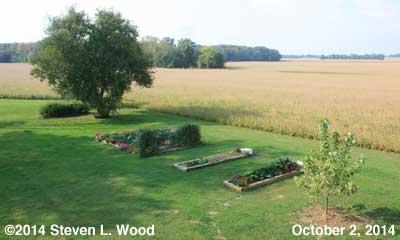 The Senior Garden - October 2, 2014