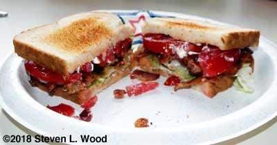 Bacon, lettuce, and tomato sandwich