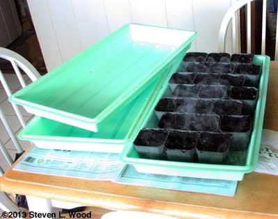 Steam on trays