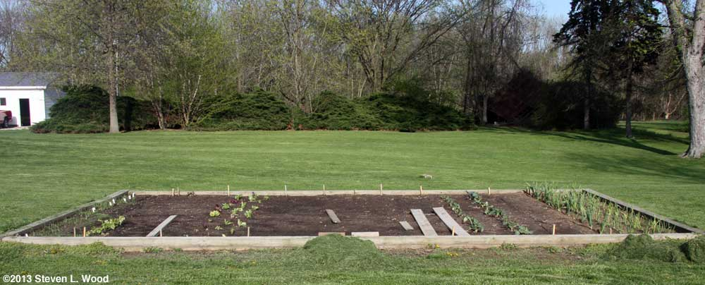 Main raised garden bed