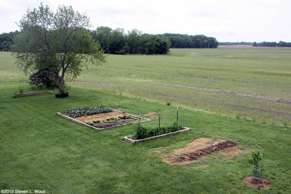Our Senior Garden - 5/23/2013
