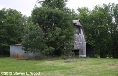 New plot by barn