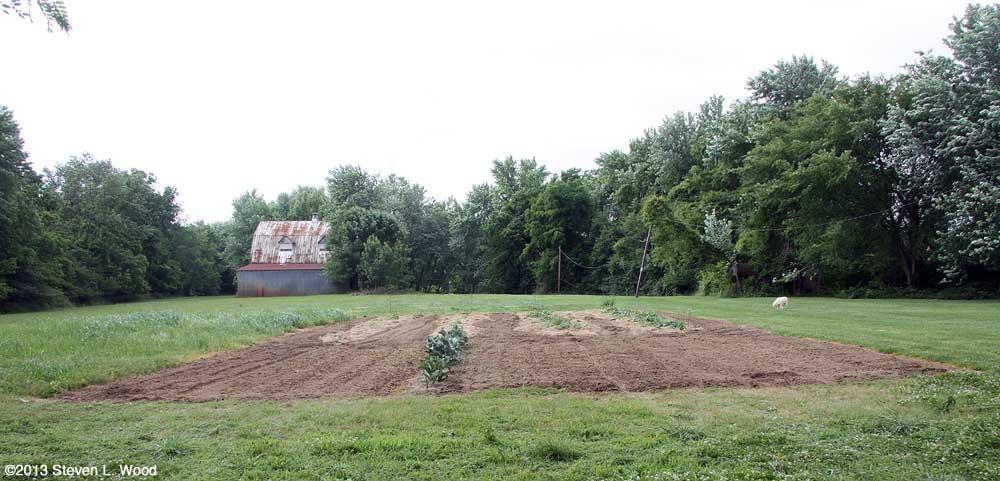 East Garden - June 13, 2013