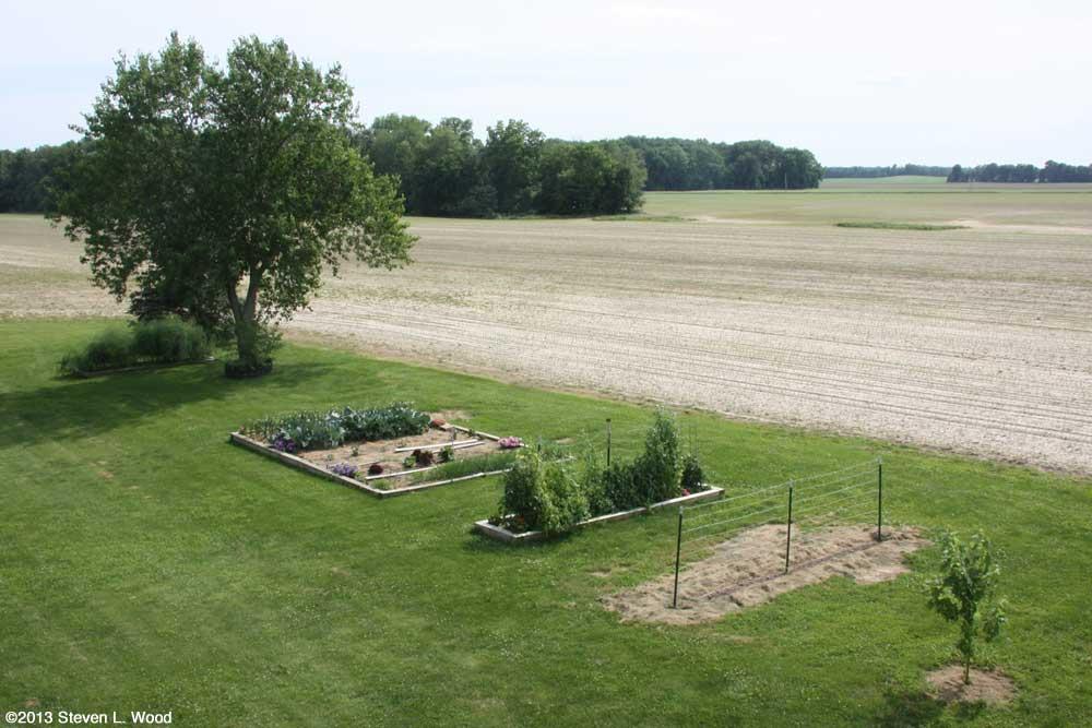 Our Senior Garden - 6/14/2013