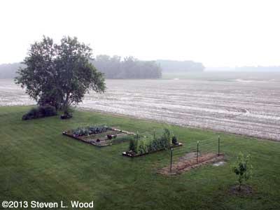 Rainy Senior Garden
