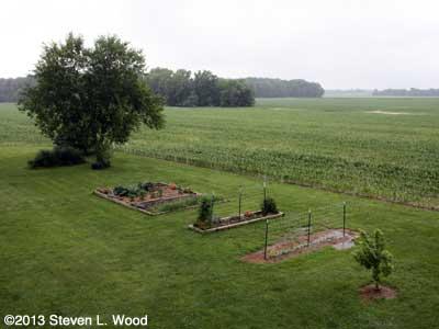Senior Garden - July 1, 2013