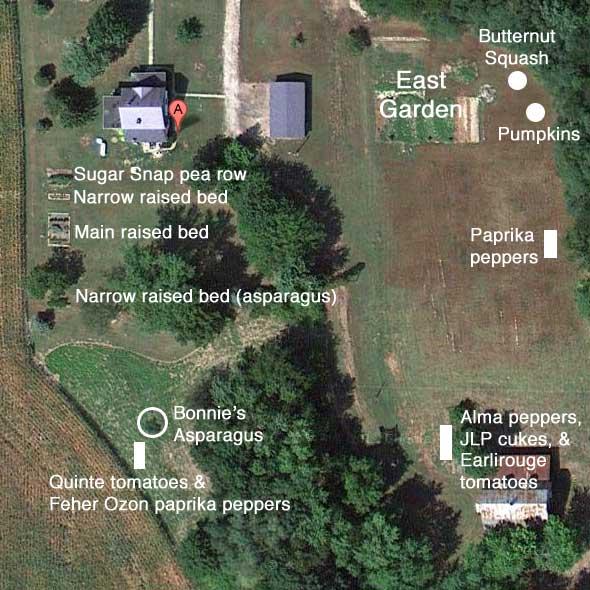 Our garden plots