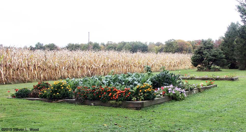 Main Garden, October 19, 2013