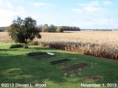 Senior Garden - November 1, 2013