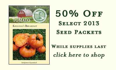 SSE - 50% Off Sale