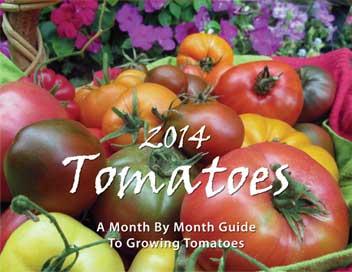 Tomato Calendar