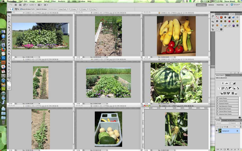 Garden images tiled in Photoshop