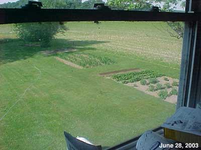 The Senior Garden 2003