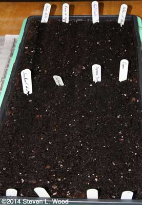 Eight varieties planted