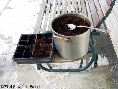 Kettle of sterilized potting mix