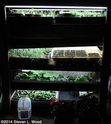 Full plant rack