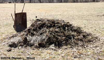 Working compost pile