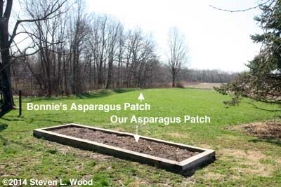 Location of asparagus patches