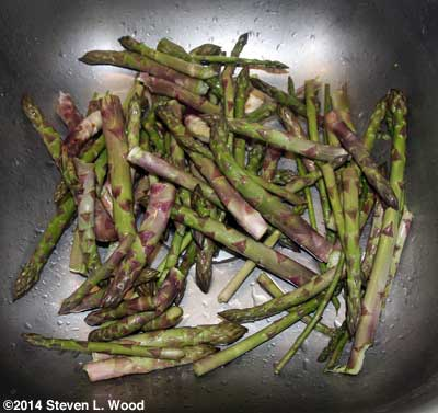 Asparagus drying in the sink