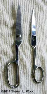 Klein Kitchen Shears