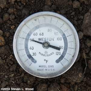 Weston Darkroom Thermometer