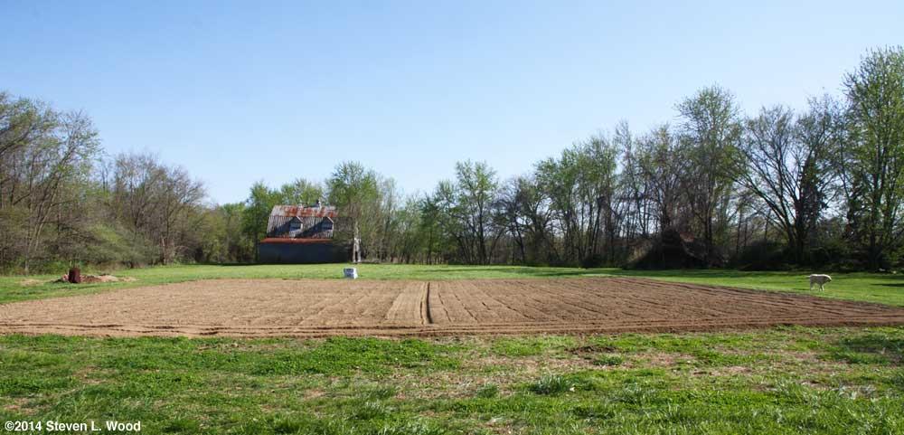 The East Garden - April 22, 2014