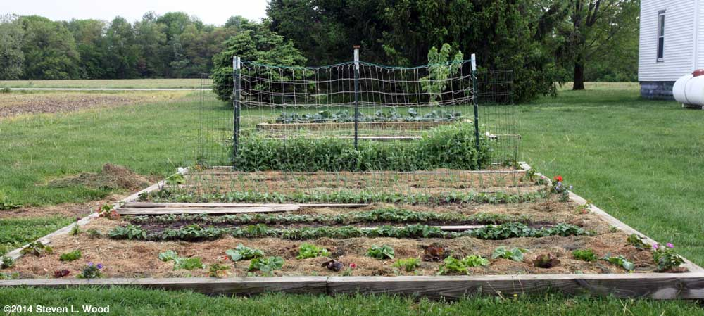Main raised garden bed