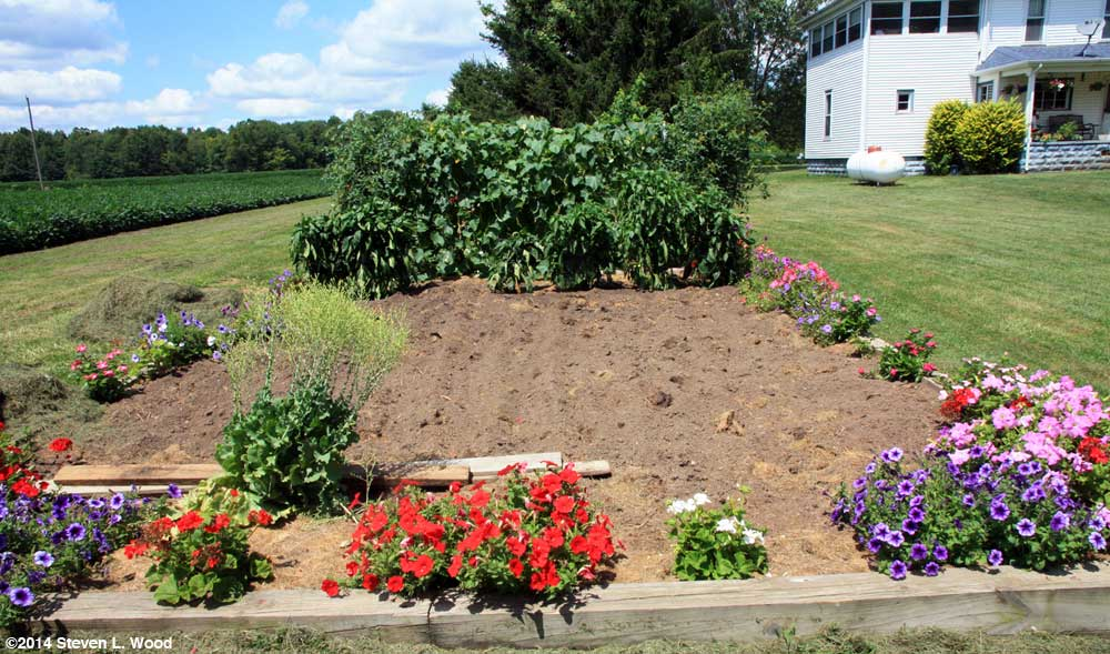 Main bed tilled