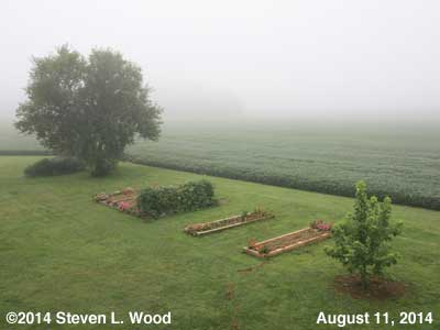 The Senior Garden - August 11, 2014