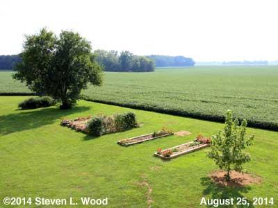 The Senior Garden - August 25, 2014