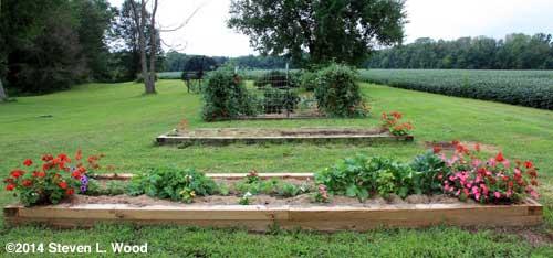 Garden - September 1, 2014