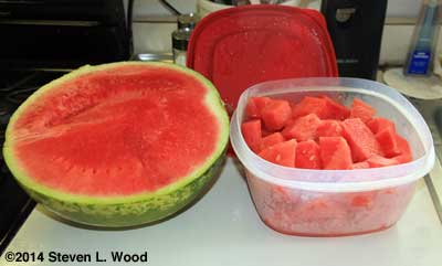 Almost seedless watermelon