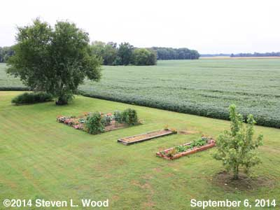The Senior Garden - September 6, 2014